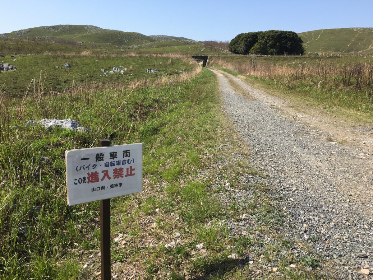 一般車両、この先進入禁止。