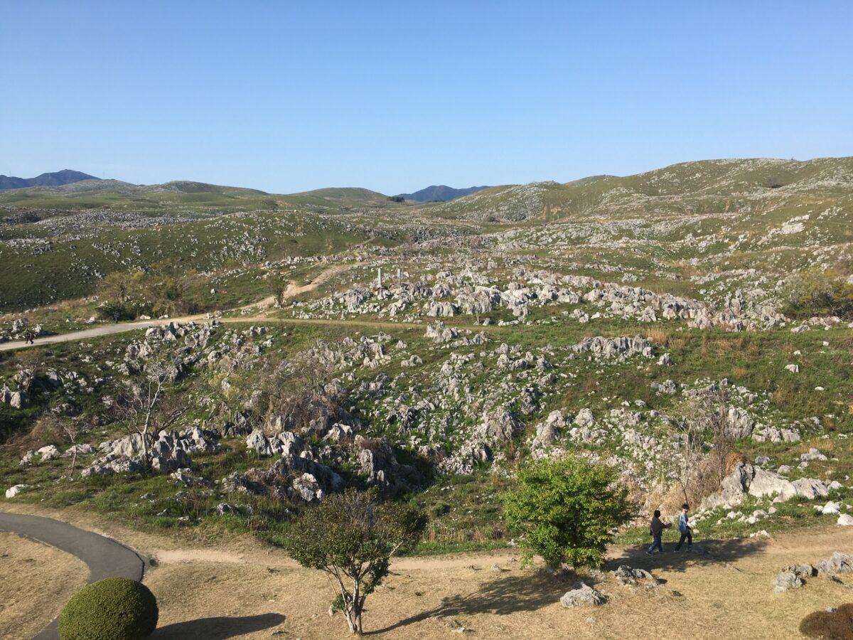 秋吉台は、こんな景色が続きます。