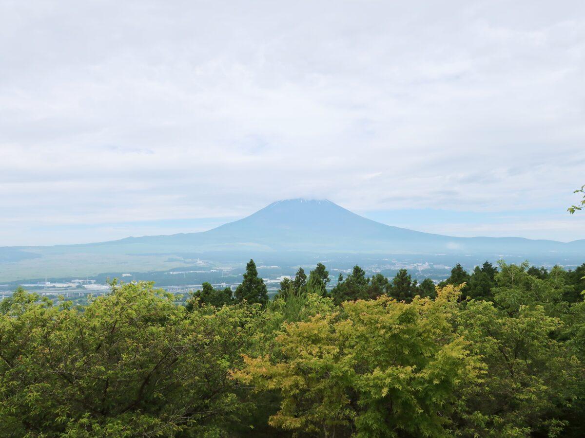 パーク内頂上で拝める富士さん